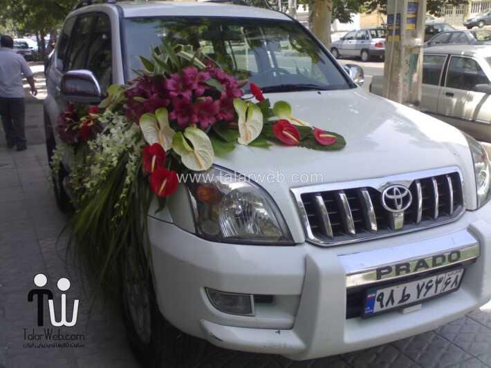 جدیدترین مدل ماشین عروس, شیک ترین مدل های ماشین عروس