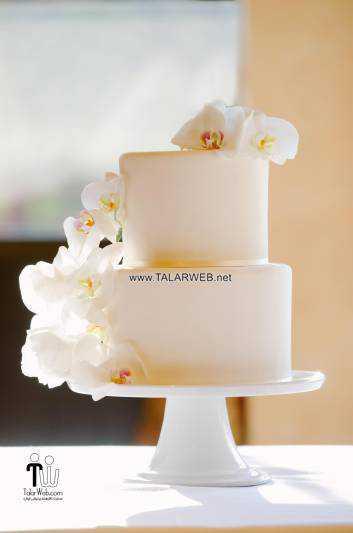 simple elegant wedding cake ideas - کیک عقد و عروسی