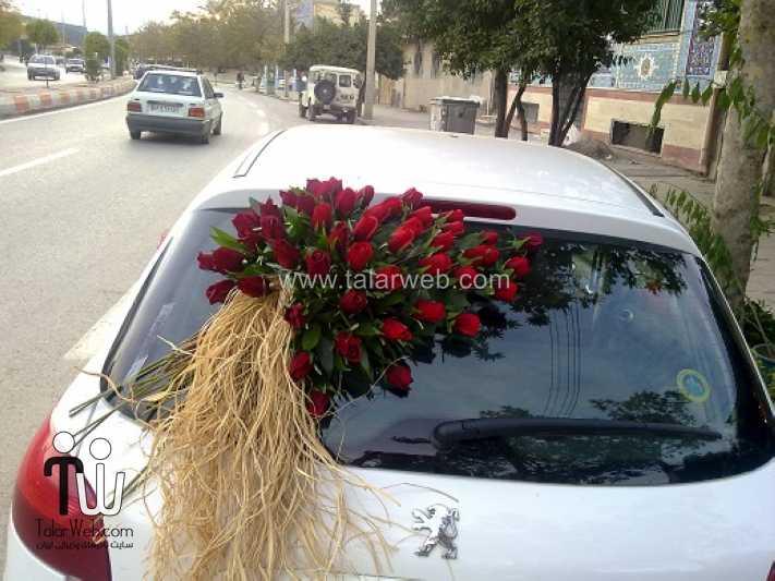weddingcar talarweb 2 - تزئین ماشین عروس ایرانی
