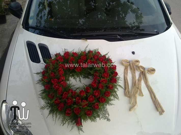 weddingcar talarweb 4 - تزئین ماشین عروس ایرانی