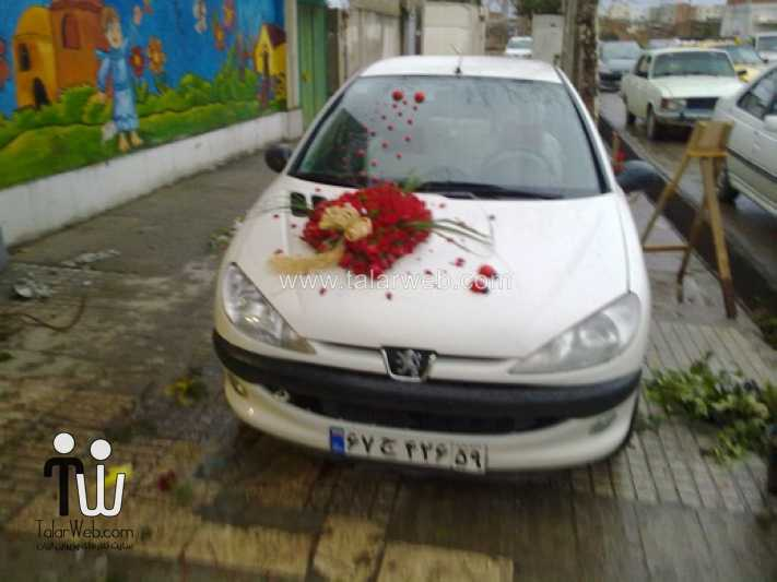 weddingcar talarweb 6 - تزئین ماشین عروس ایرانی