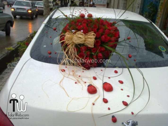 weddingcar talarweb 7 - تزئین ماشین عروس ایرانی