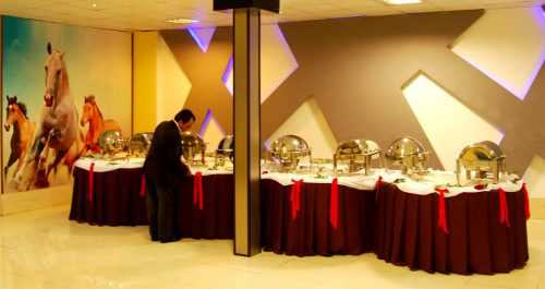 ghasre sefid bagh talar 3 500x265 - باغ تالار قصر سفید