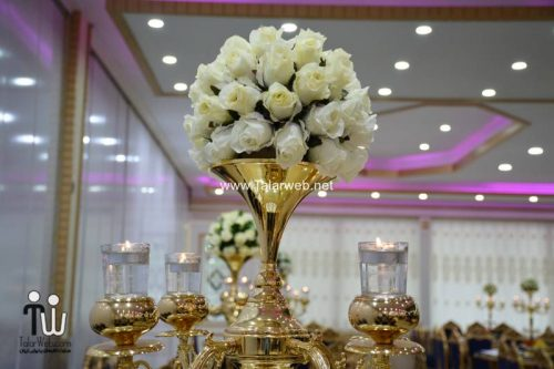 bagh talar ghasr 12 500x333 - باغ تالار قصر احمدآباد