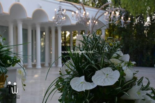 bagh talar ghasr 20 500x333 - باغ تالار قصر احمدآباد