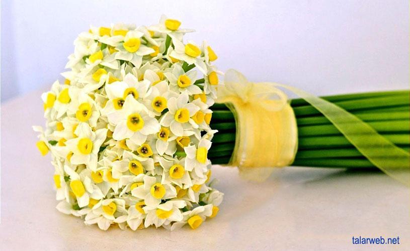 daste gol aroos - ۱۴ کلید طلایی در انتخاب دسته گل عروس