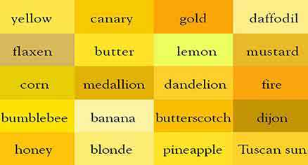 دوست داران رنگ زرد تیره چه شخصیتی دارند